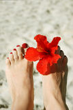 De voeten van de vrouw met nagellak en bloem Royalty-vrije Stock Foto's