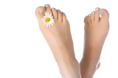 De voeten van de vrouw met osseoog Stock Foto's