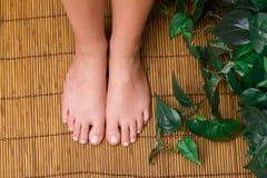 De voeten van Pedicured royalty-vrije stock afbeelding