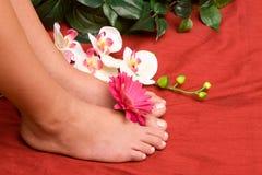 De voeten van Pedicured royalty-vrije stock afbeeldingen