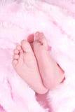De voeten van zuigelingen Stock Fotografie