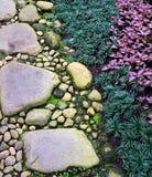De Voetweg van het steengrint op Zen Garden met Mondo Grass en Siervlam Violet Plant Stock Afbeelding