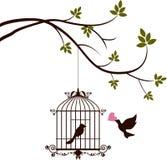 De vogel brengt liefde aan de vogel in de kooi Stock Foto's
