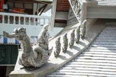 De vogel is op het dak Royalty-vrije Stock Foto's