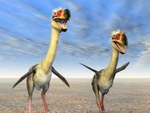 De Vogel Phorusrhacos van de verschrikking Royalty-vrije Stock Foto's