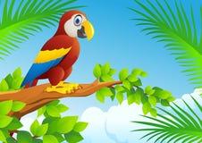 De vogel van de ara Royalty-vrije Stock Afbeelding