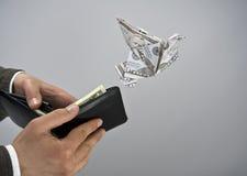 De vogel van de dollar Royalty-vrije Stock Foto's