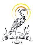 De vogel van de reiger op het meer Royalty-vrije Stock Afbeeldingen