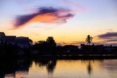 De vogel van de zonsondergang whith wolk Stock Afbeeldingen