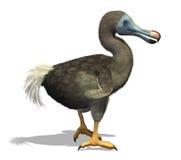 De Vogel van het dodo Stock Afbeeldingen