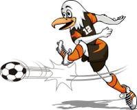 De vogel van het voetbal Stock Foto
