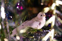 De vogel van Kerstmis Royalty-vrije Stock Afbeeldingen