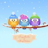 De vogel van Kerstmis Stock Fotografie