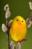 De vogel van Pasen Royalty-vrije Stock Afbeeldingen