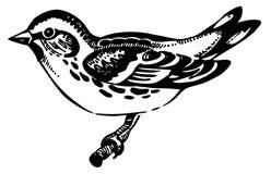 De vogel van Siskin vector illustratie