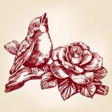 De vogel zingt een lied, zittend op een realistische schets van de takhand getrokken vectorillustratie royalty-vrije illustratie