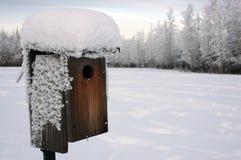 De vogelhuis van de winter stock foto's