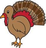 De vogelpictogram van Turkije stock foto