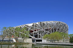 De vogels nestelen Nationaal Stadion Royalty-vrije Stock Fotografie