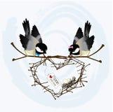 De Vogels van de liefde Stock Afbeelding