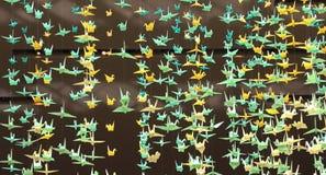 De vogels van het document Stock Afbeeldingen