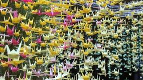 De vogels van het document Stock Foto