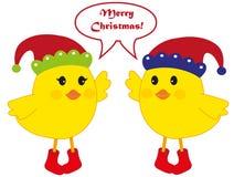 De vogels van Kerstmis Stock Afbeelding