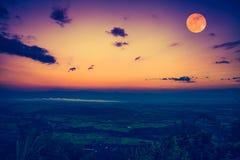 De volle maan in de avond na zonsondergang In openlucht bij nacht Stock Afbeeldingen
