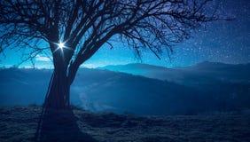 De volle maan die boven de bergvallei toenemen Royalty-vrije Stock Foto's