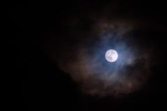 De volle maan glanst Stock Fotografie