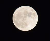 De volle maan op een donkere hemel met de details en de structuur Royalty-vrije Stock Afbeeldingen