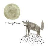 De volle maan van de wolvenliefde Stock Foto's