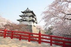 De volledige gebloeide kers komt en Japans kasteel tot bloei Royalty-vrije Stock Afbeeldingen