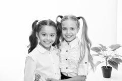 De volta à escola Meninas felizes no uniforme De volta ao conceito da escola Meninas com o cabelo à moda isolado no branco foto de stock