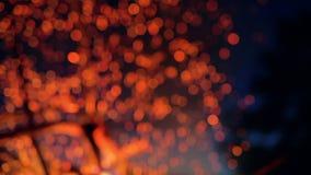 De vonken van de kampbrand