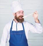 De voorbereiding van het voedsel vegetari?r Rijpe chef-kok met baard Het op dieet zijn en natuurvoeding, vitamine Gebaarde mensen royalty-vrije stock foto