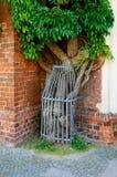 De voorgevel van een oud die gebouw met klimop wordt behandeld Royalty-vrije Stock Foto's