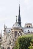 De voorgevel van het oosten van katholiek kathedraalnotre-dame de paris stock foto