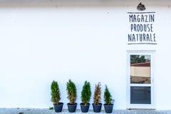 De voorkant van een kruidenierswinkelopslag, met groene kleine bomen en men  Stock Foto's