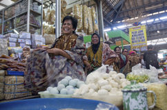 DE VOORSPELLING VAN DE DE BANKLENINGgroei VAN INDONESIË Stock Afbeelding