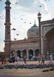 De voorverhoging van Masjid van Jama, New Delhi Stock Afbeeldingen