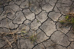 De voorwaarden van de droogte Stock Foto