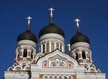 De voorzijde van Alexander Nevsky Stock Afbeelding