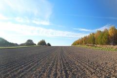 De voren van het geploegde gebied bij de rand van de bos Vrije grond voor het planten van gewassen stock fotografie