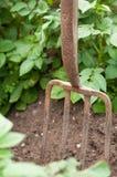 De Vork van de tuin royalty-vrije stock afbeeldingen