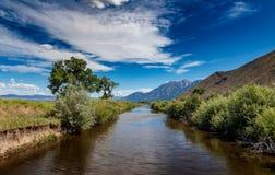 De vork van het oosten van de carsonrivier die de vallei en het kijken aan de siërra bergen doorneemt stock afbeeldingen