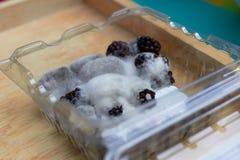 De vorm of de paddestoel groeit op rasberry in doos stock foto