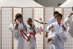 De Vorm van de karate royalty-vrije stock foto