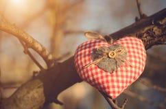De vorm van het hart Stock Foto