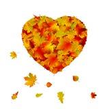 De vorm van het hart die van de herfstblad wordt gemaakt. EPS 8 Stock Afbeelding